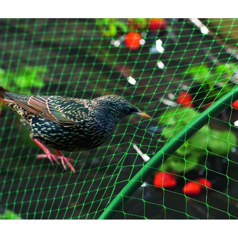 Filet de protection oiseaux PE Birdnet vert 5x5m
